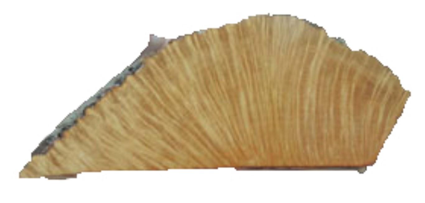 A Piece of Briar waiting for a carver